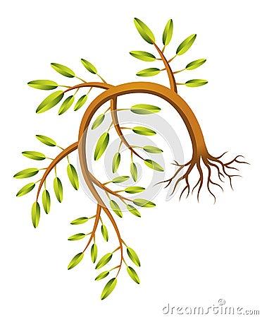 Nedböjt ungt träd