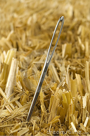 Free Needle In A Haystack Stock Photos - 1606553