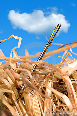 Free Needle In A Haystack Royalty Free Stock Photo - 19479095