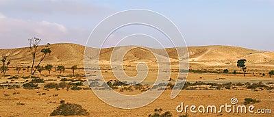 Negev Desert in Israel (panorama).