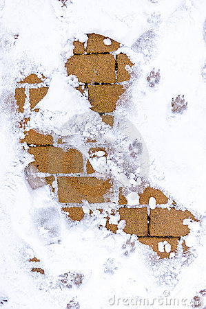 Neige au sol