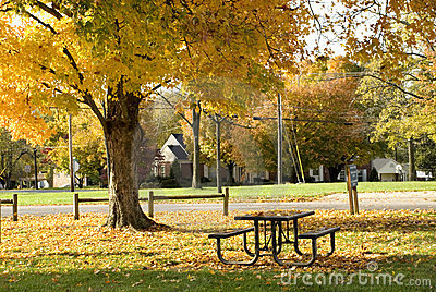 Neighborhood Park in Autumn