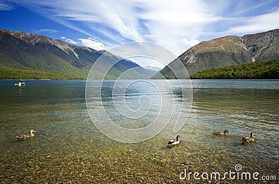Nelson Lakes Landscape