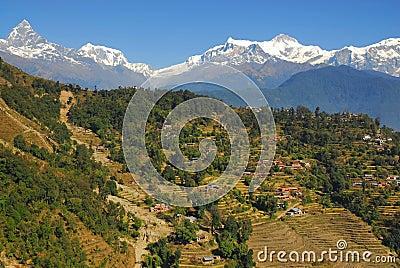 Nepal scenary