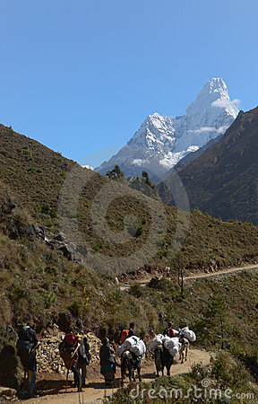 Nepali porters in the Everest trail Editorial Image