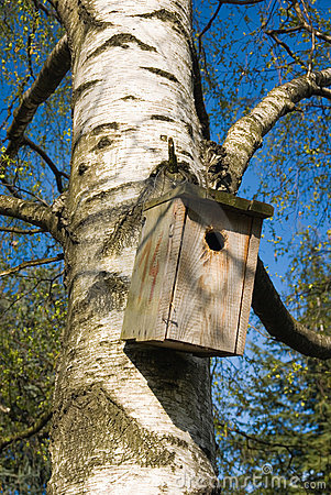 Free Nest Box Stock Image - 3832681