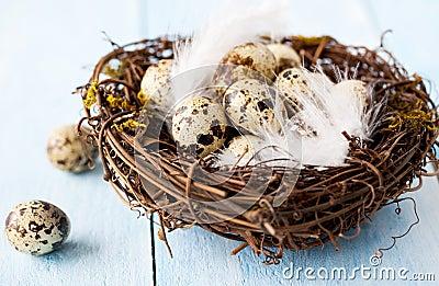 Nest for easter