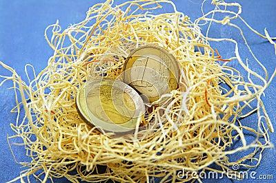 Nest egg euro