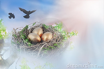 Nest with golden eggs
