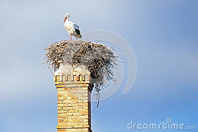 Nest with a stork onan abandoned factory chimney.