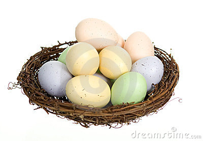Nest with Twelve Eggs