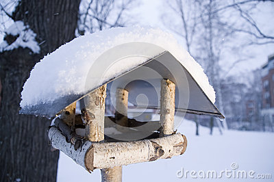 Nesting box in the winter