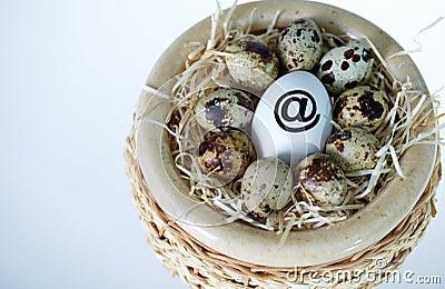 Net egg