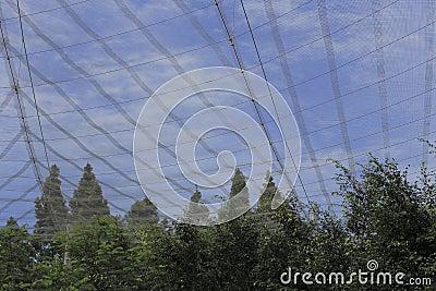 Net over Aviary
