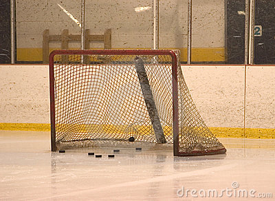 Net with pucks