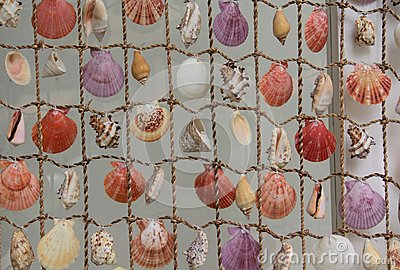 Net with seashells