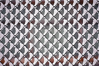 Netting pattern