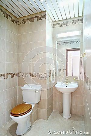 Nettoyez La Salle De Bains Avec La Toilette Et Le Lavabo