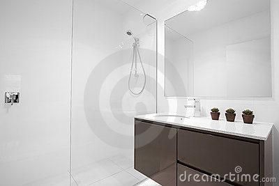 Nettoyez la salle de bains moderne