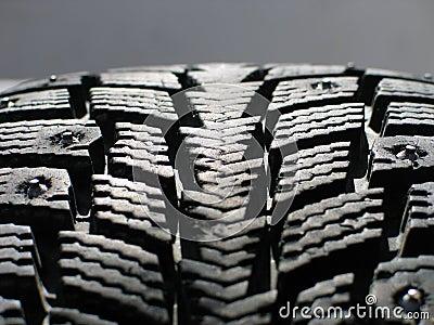 Neumático de la nieve