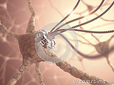 Neural Nanotechnology