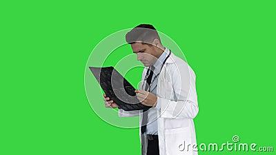Neurocirurgião observando a varredura do mri, progresso de exame da doença em uma tela verde, chave do croma vídeos de arquivo
