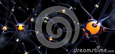 Neuronas vidriosas