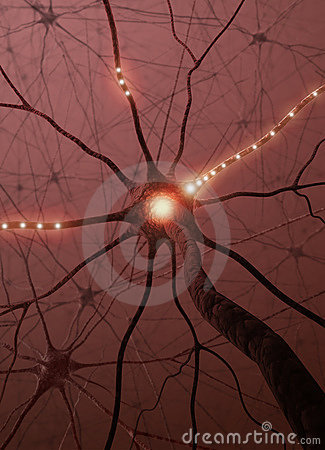 Neurons The power of the mind