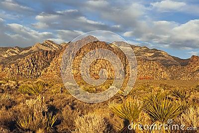 Nevada Desert Dawn