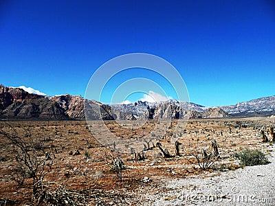 Nevada desert red rock canyon