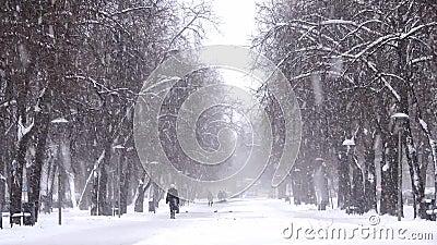 Nevadas en la ciudad, gente que camina en el camino nevoso Ventisca, nevada almacen de video