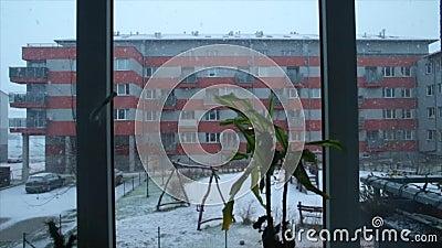 A neve cai na jarda filme
