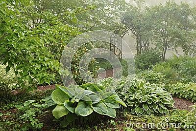 Schaduw maken in tuin