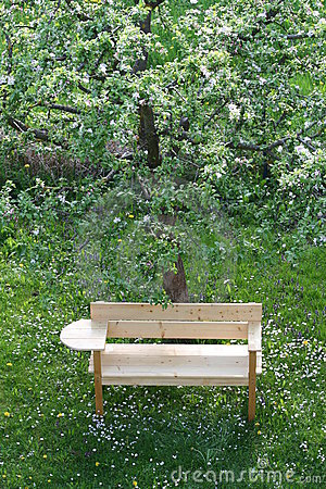 Free New Bench Under An Apple Tree In Spring Stock Photo - 7668210