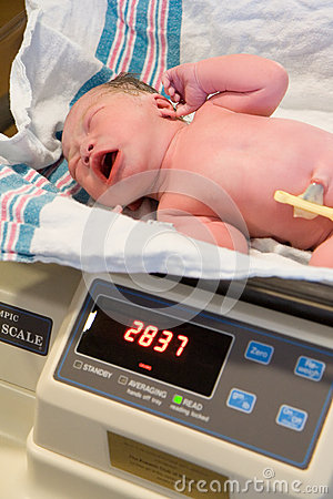 Free New Born Baby Being Weighed Stock Photography - 27598432