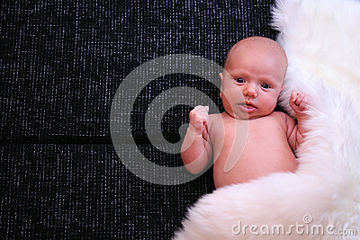 New born baby cover by white fur