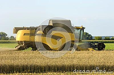 New Combine harvester