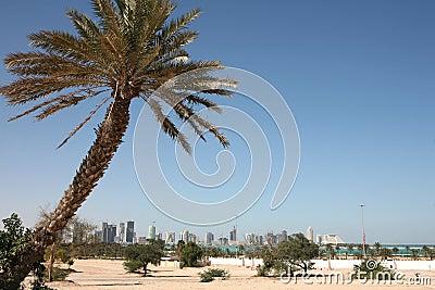 New Doha skyline