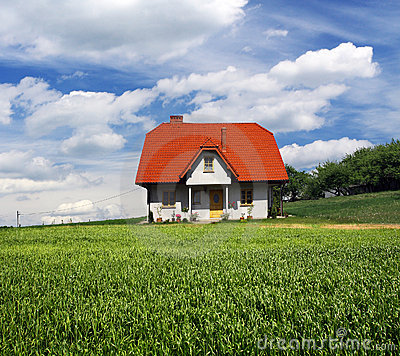 New house on grassland