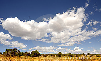 New mexico landscape