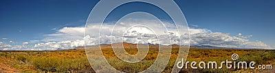 New Mexico Pano