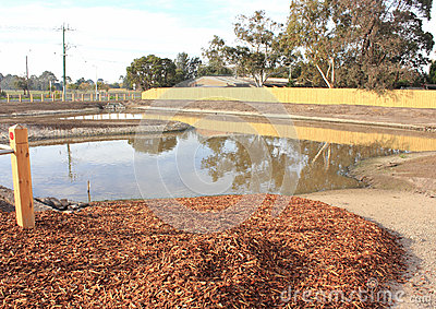 New pond in newly developed park