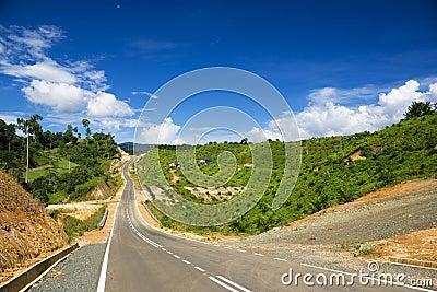 New Road Through Oil Palm Estate