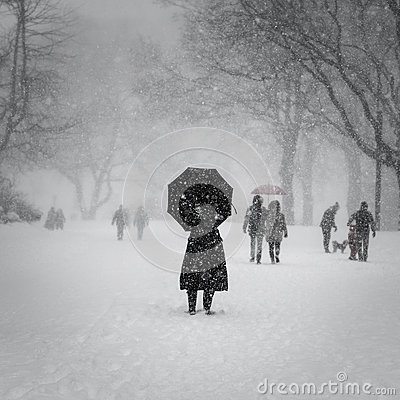 Free New York City, 1/23/16: Central Park Covered In Heavy Snow During Winter Storm Jonas Royalty Free Stock Photos - 65528478