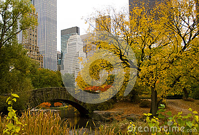 New York City skyline and Central Park in Autumn