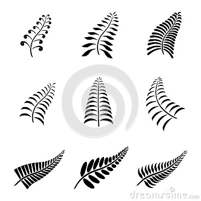 Free New Zealand Fern Leaf Tattoo And Logo With Maori Style Koru Design Stock Images - 111230214
