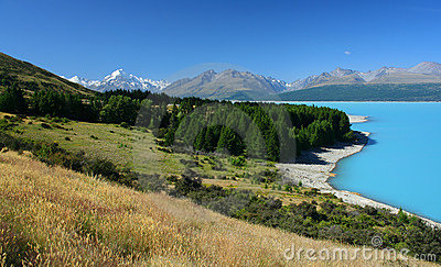 New Zealand scenery with Mount Cook in background