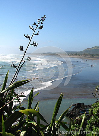 Free New Zealand Surfing Beach With Flax Foreground. Stock Photography - 27984302