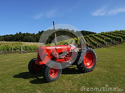 New Zealand: vineyard with red tractor h