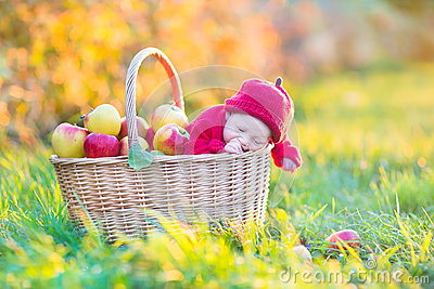 Newborn baby in basket with apples in garden